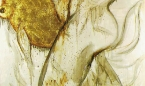 complices-1998-180-x-200-cm-mixta-lienzo