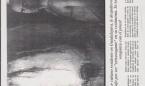 siglo-21-1994